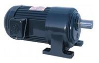 Motor giảm tốc bánh răng loại chân đế trục thẳng 2,2KW/3HP
